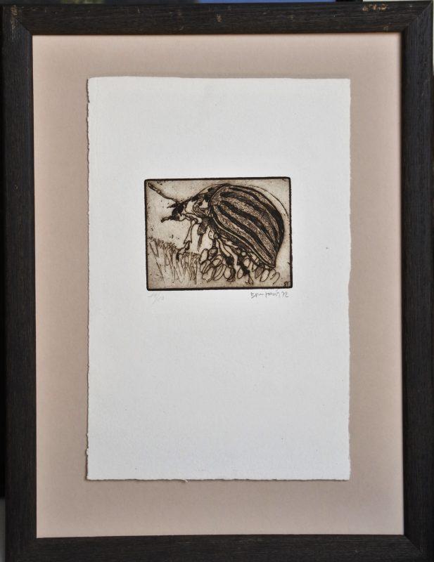"""Bonifacio – """"Insecto"""" grabado aguafuerte, enmarcado – El Marco Verde ..."""