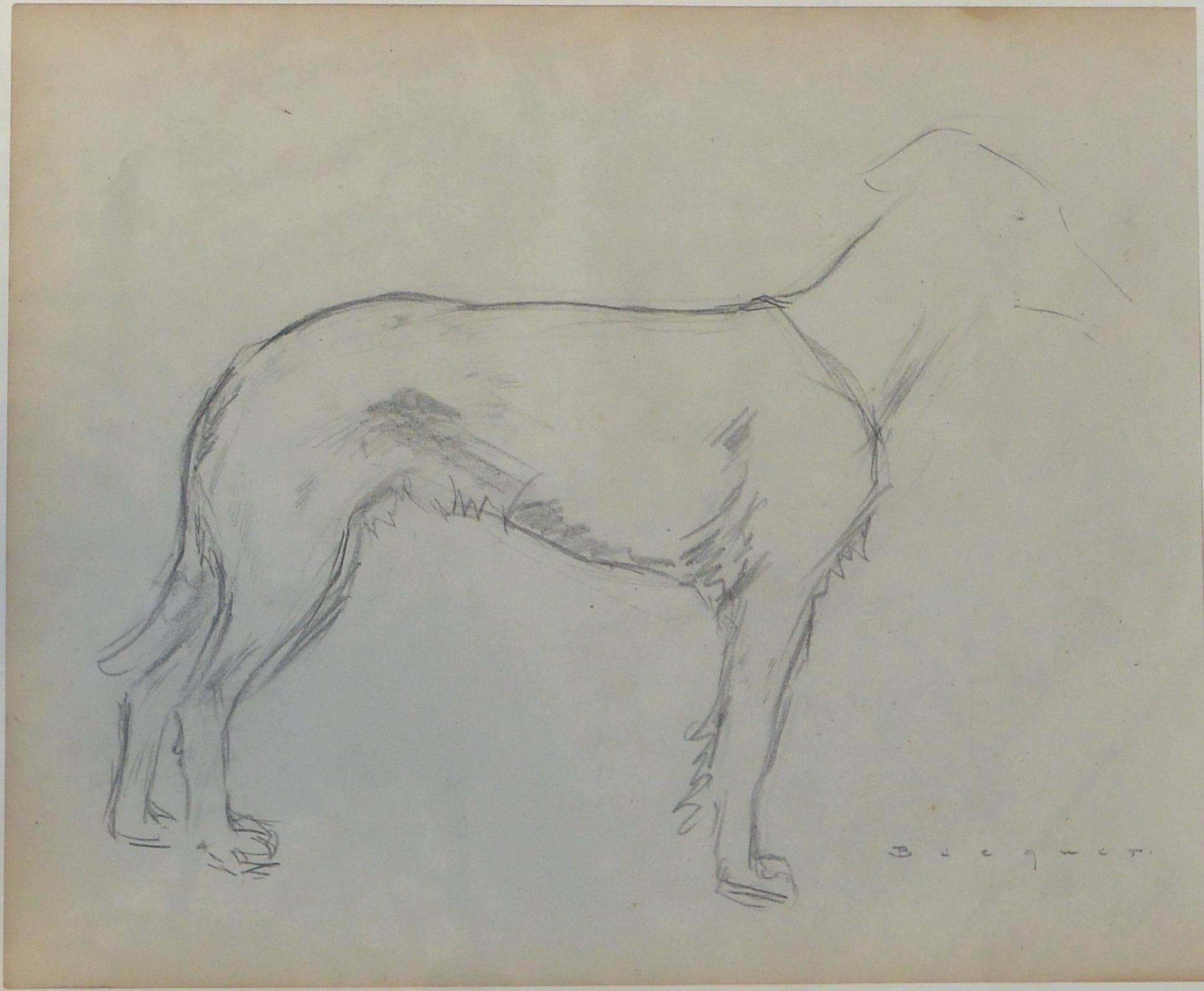 Carlos Becquer Boceto De Perro Lápiz Papel Enmarcado El Marco