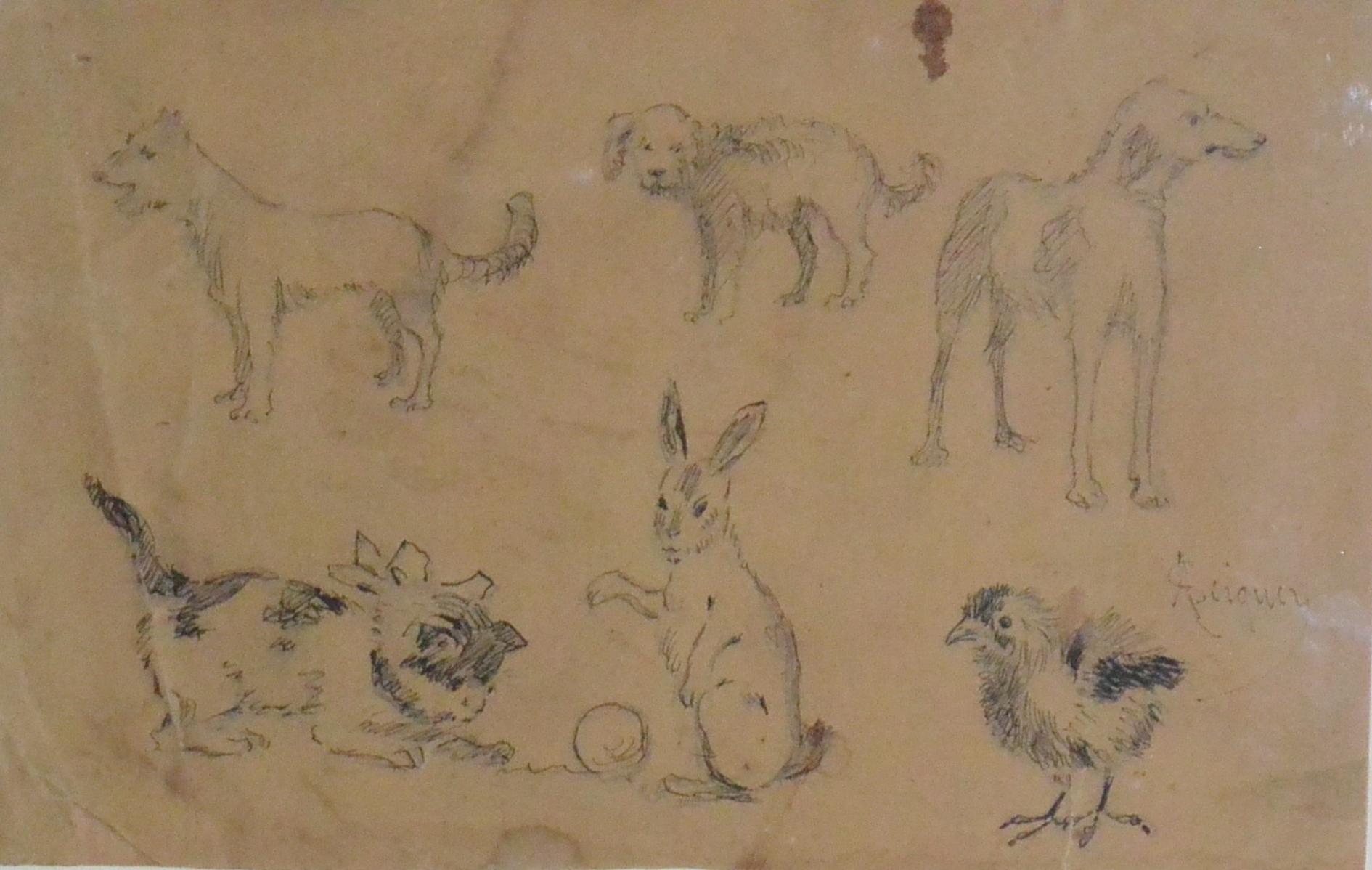 Seiquer Alejandro, bocetos de animalitos, dibujo lapiz papel ...