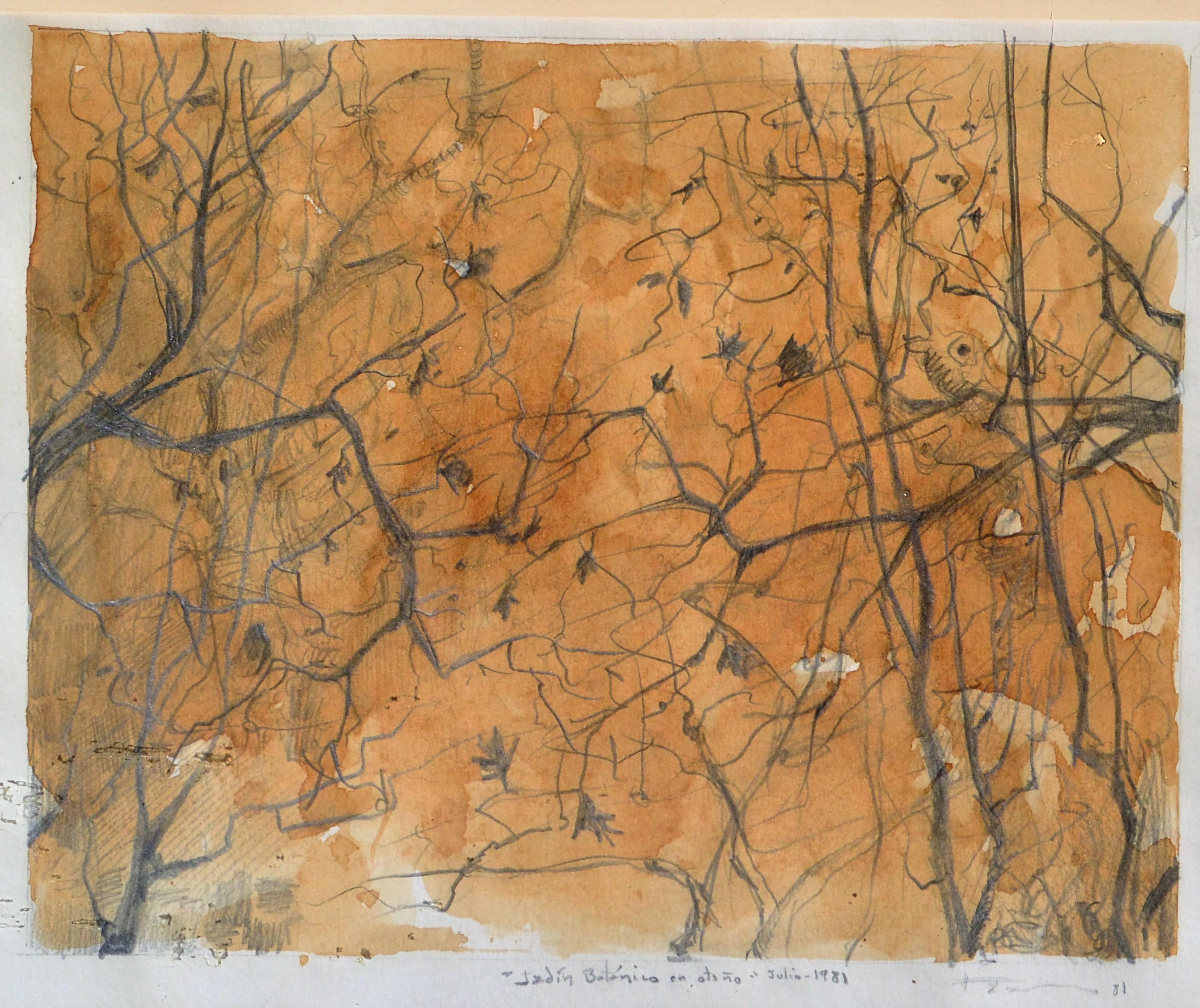 """Roberto L. Pizarro – """"Jardín botánico en otoño"""" dibujo lápiz y café ..."""