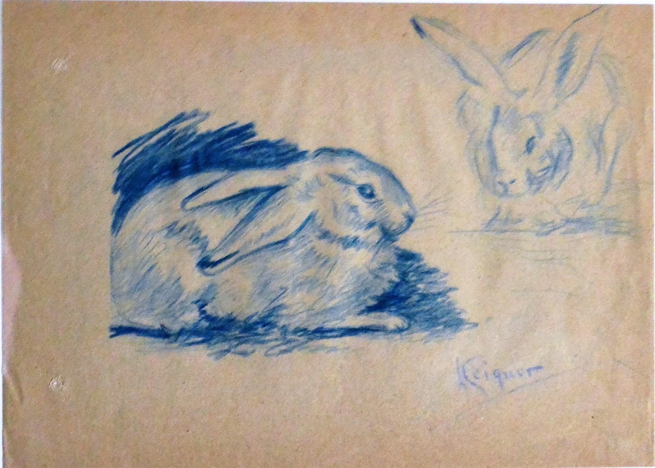 Alejandro Seiquer Estudios De Conejos Dibujo Lápiz Color Papel