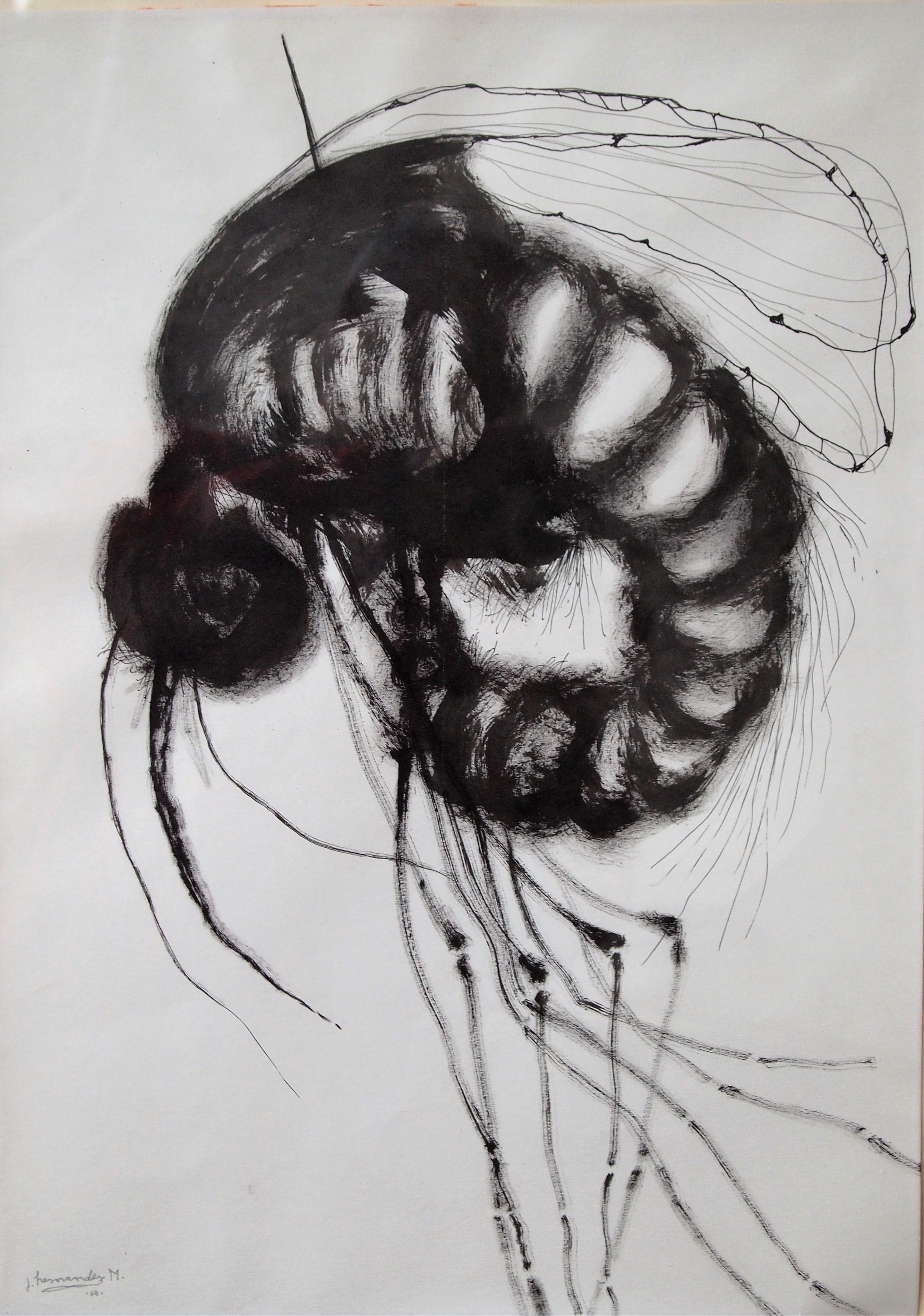 """José Hernandez 1964 – """"Insecto"""" dibujo acrílico y tinta china papel ..."""